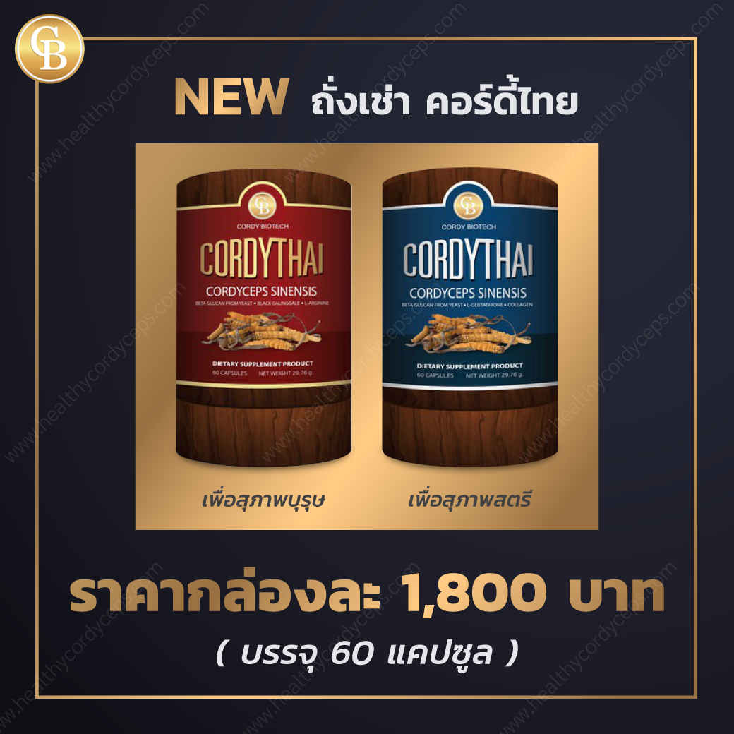 new_healthycordyceps_1