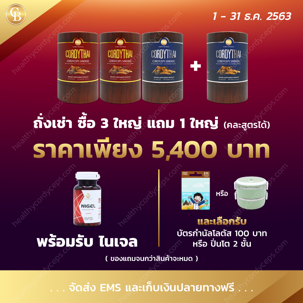 healthycordyceps-Promotion-Dec-2020-1
